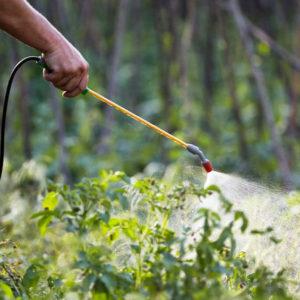 Pest Control & Plant Health